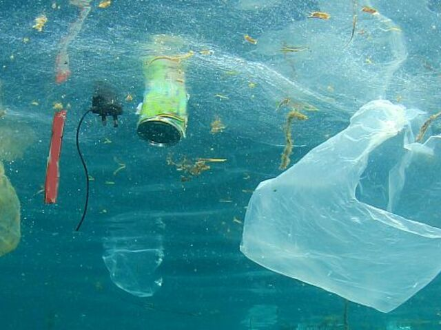 The picture shows floating plastic waste.